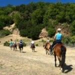 Equestrian Facilities at Anderson Lake County Park