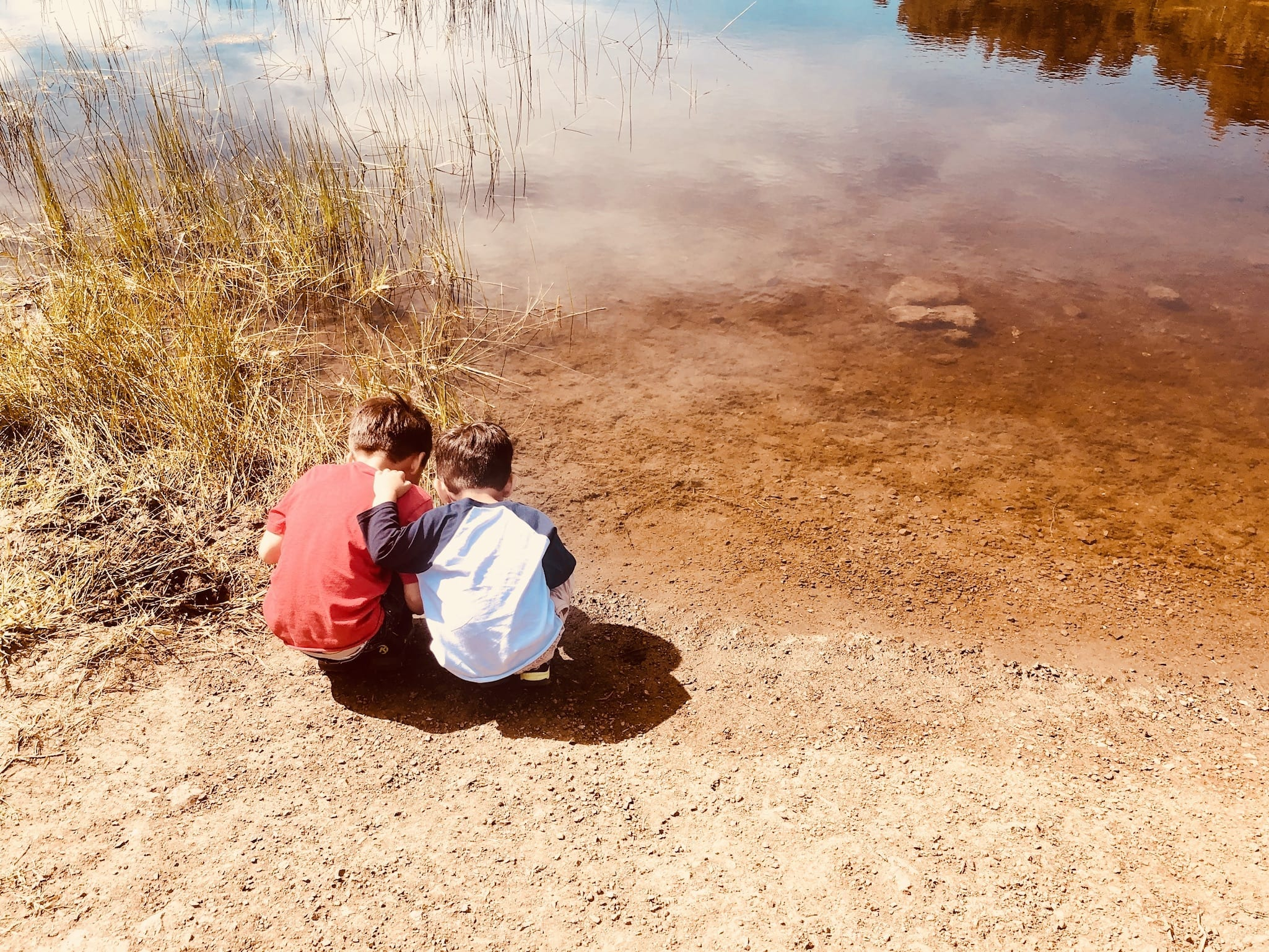 Anderson Lake County Park: Easy Family-Friendly, Dog-Friendly South Bay Hike