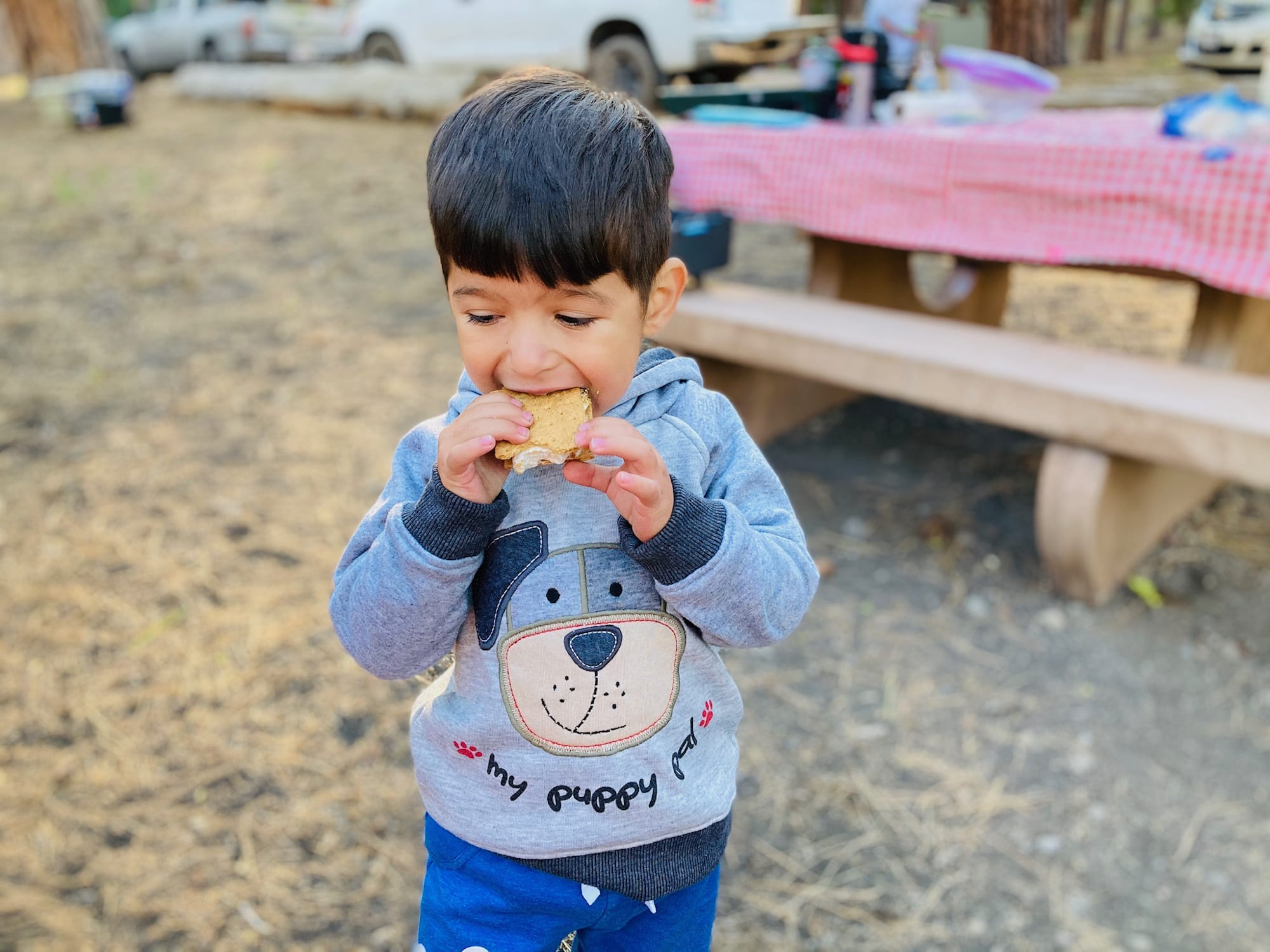 Bug Eats S'mores: Lassen National Park with kids