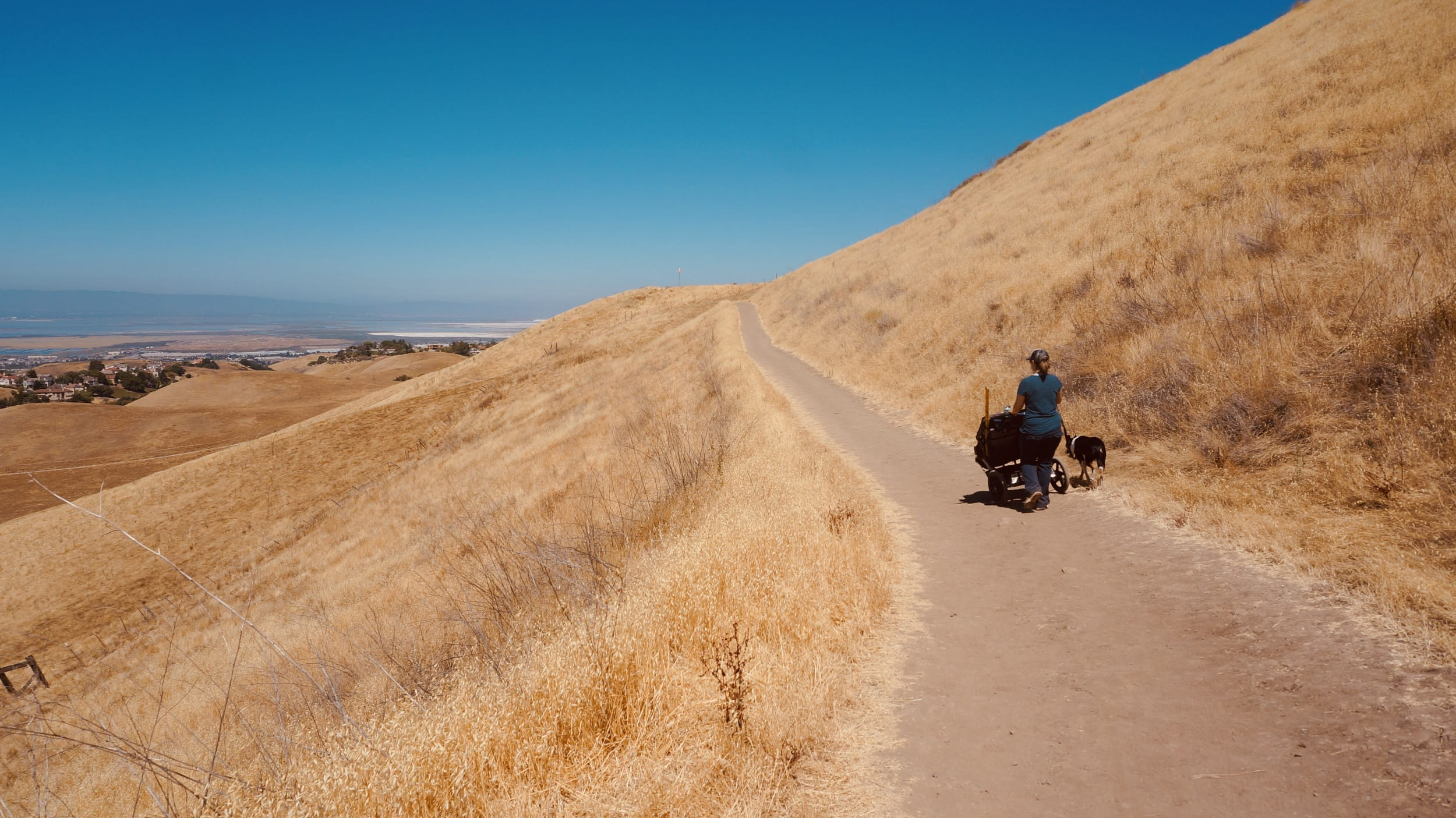 Ed R. Levin County Park: South Bay Hike with Kids in the Milpitas Foothills