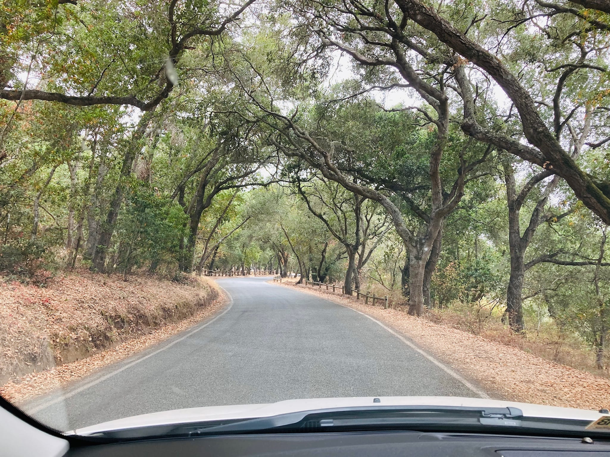 The Drive into Coyote Lake on Coyote Reservoir Road