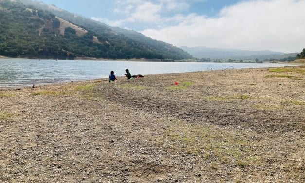Coyote Lake: Playing at Gilroy's (Rocky) Sandy Beach