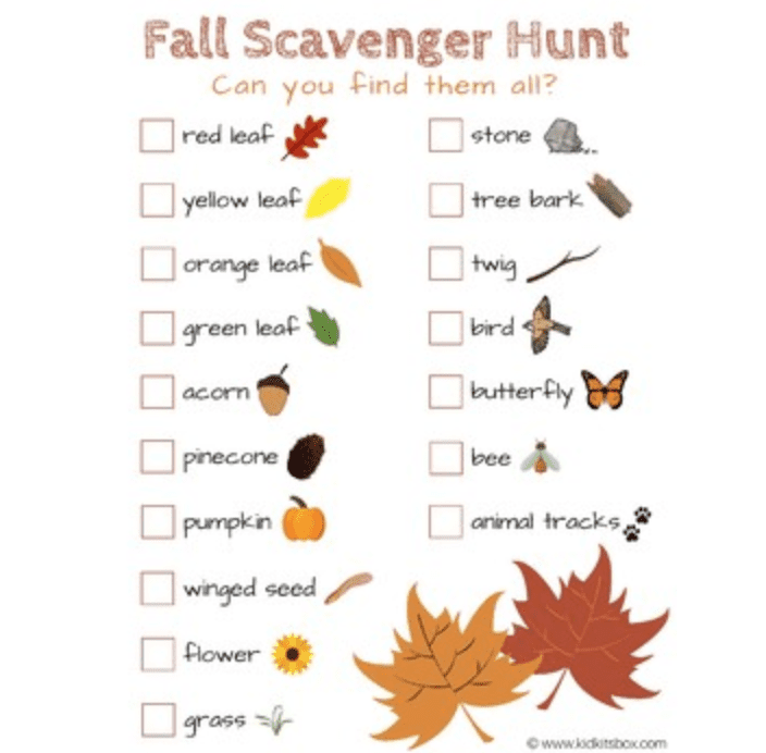 Fall Scavenger Hunt, Teachers Pay Teachers