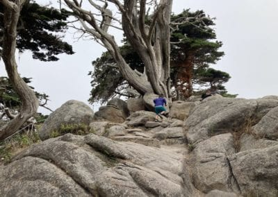 Rock Scrambling - Cypress Grove Trail, Point Lobos Hike