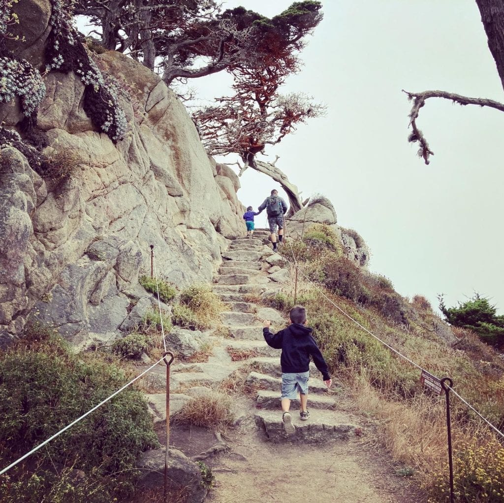 Stairs on the Cypress Grove Trail - Point Lobos Hike