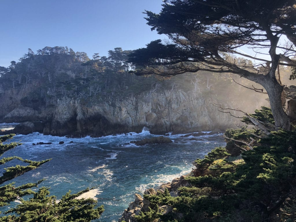Views into the Monterey Bay from the Cypress Trail, Point Lobos