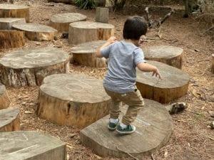 Bug on the Stump Jump, San Francisco Botanical Garden Children's Garden