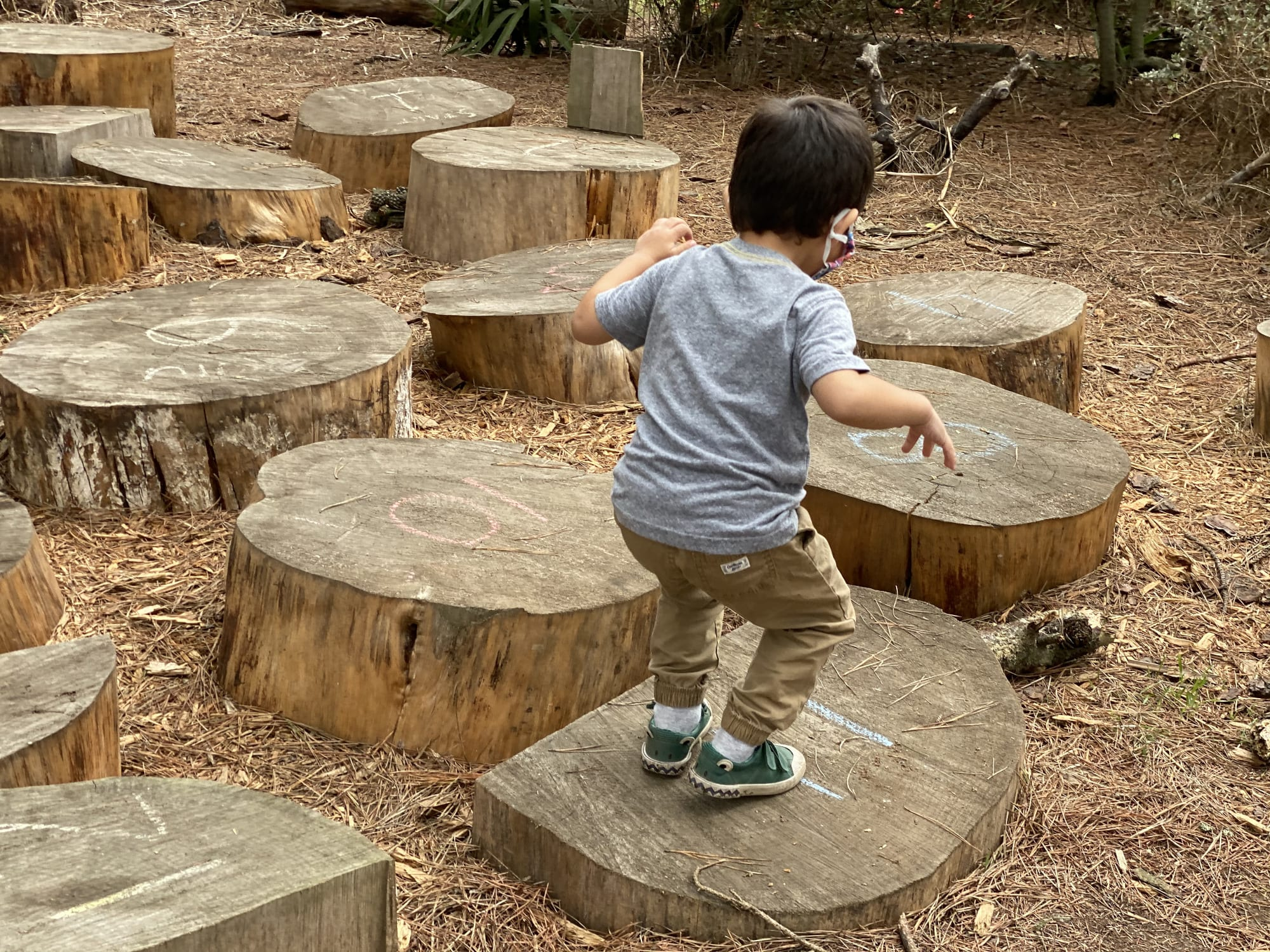 Bug on the Stump Jump, San Francisco Botanical Garden Children's Garden