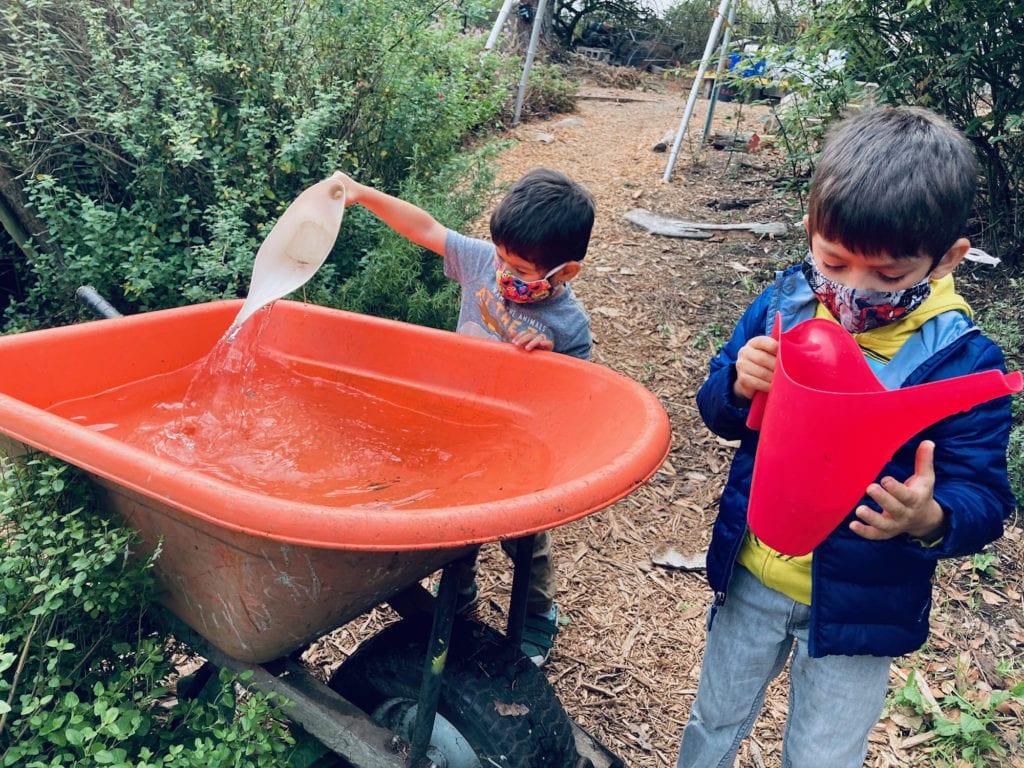 San Francisco Botanical Garden with Kids, The Sensory Garden in the Children's Garden
