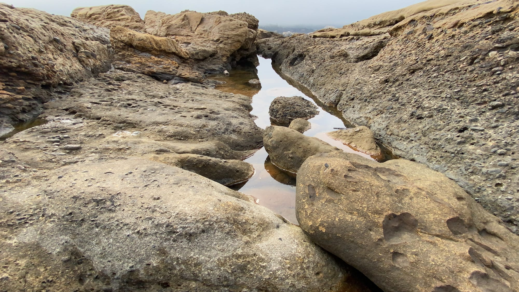 Tides Coming In, South Shore Trail, Point Lobos Hike