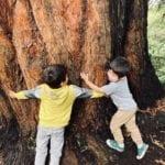 San Francisco Botanical Garden with Kids
