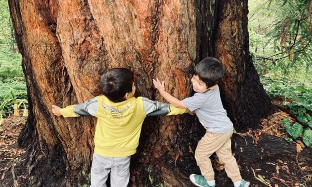 San Francisco Botanical Garden with Kids