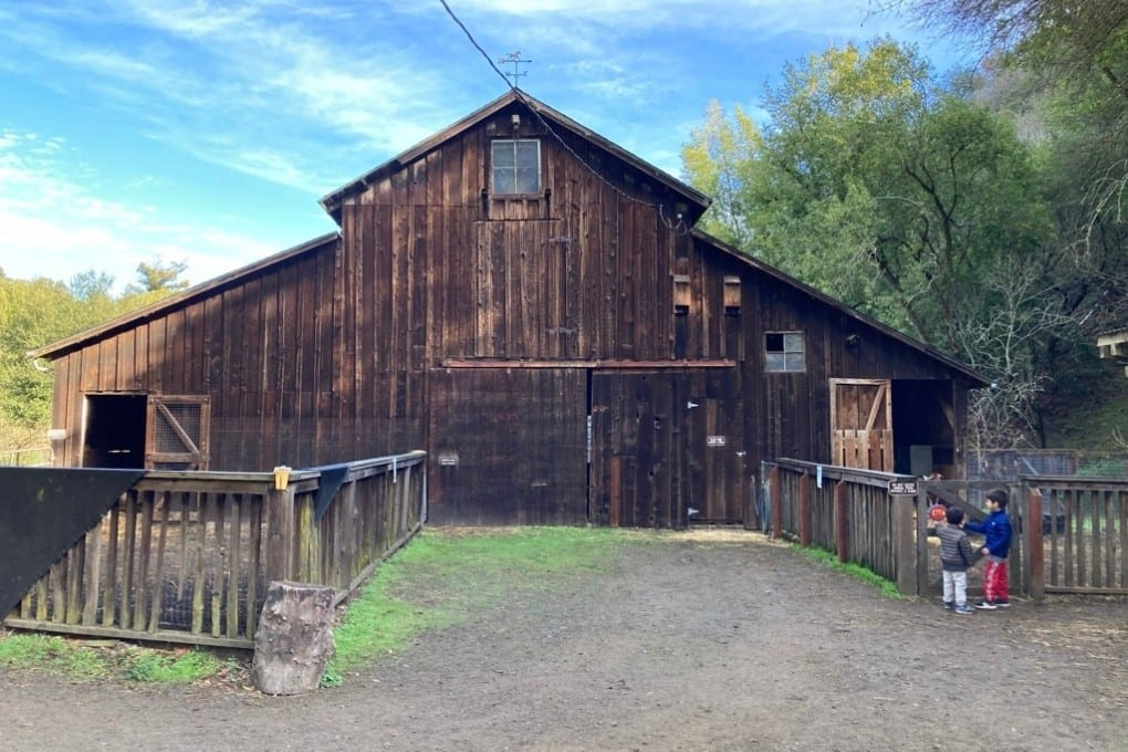 There are so many places to explore at Hidden Villa. This large barn where the goats live is one of our favorites.