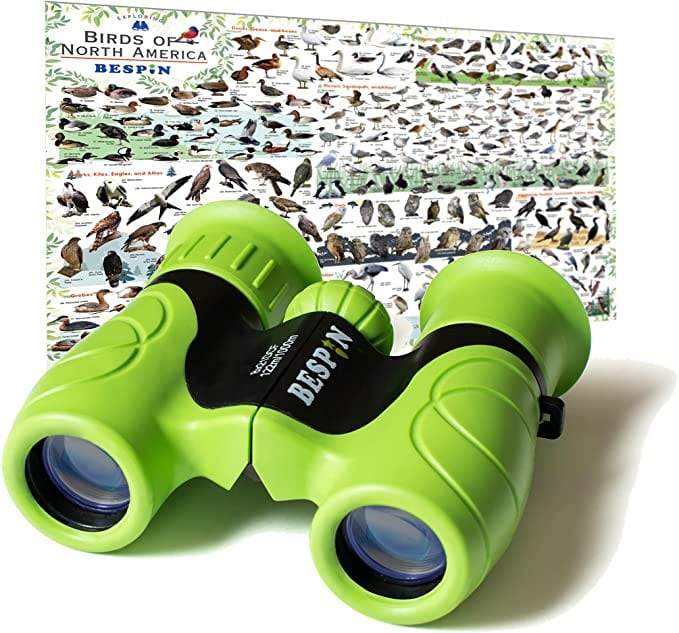 Green Bespin Kids Binoculars photographed with the bird identification map that comes with each pair