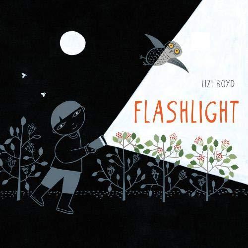 Book Cover: Flashlight