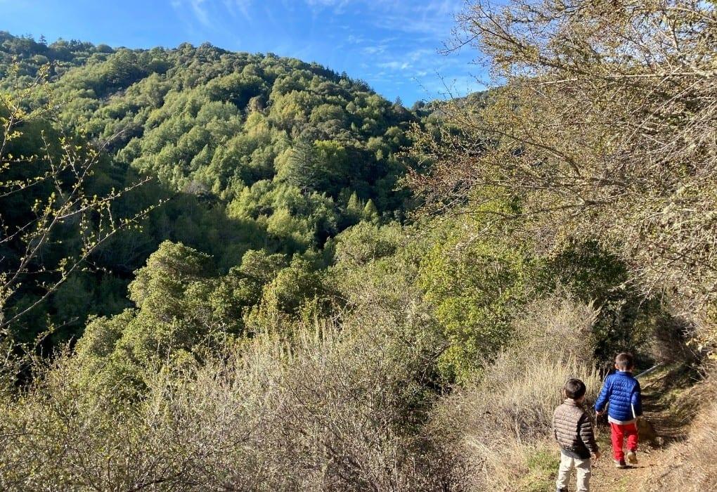 Hike through Hidden Villa hills in Los Altos, CA
