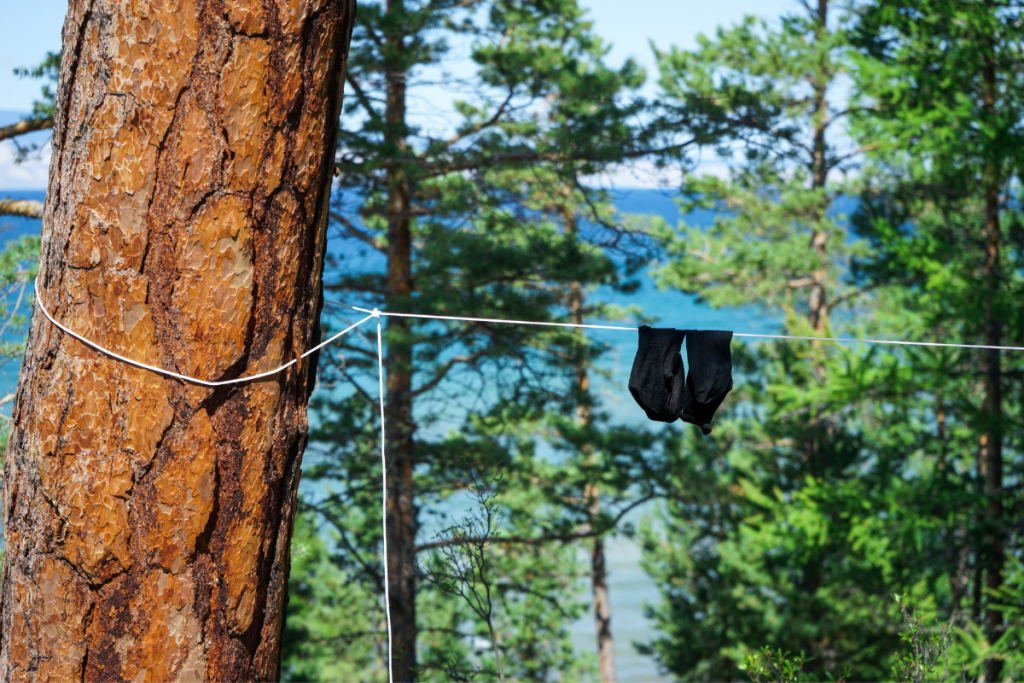 Image of hiking socks hanging out to dry in the forest