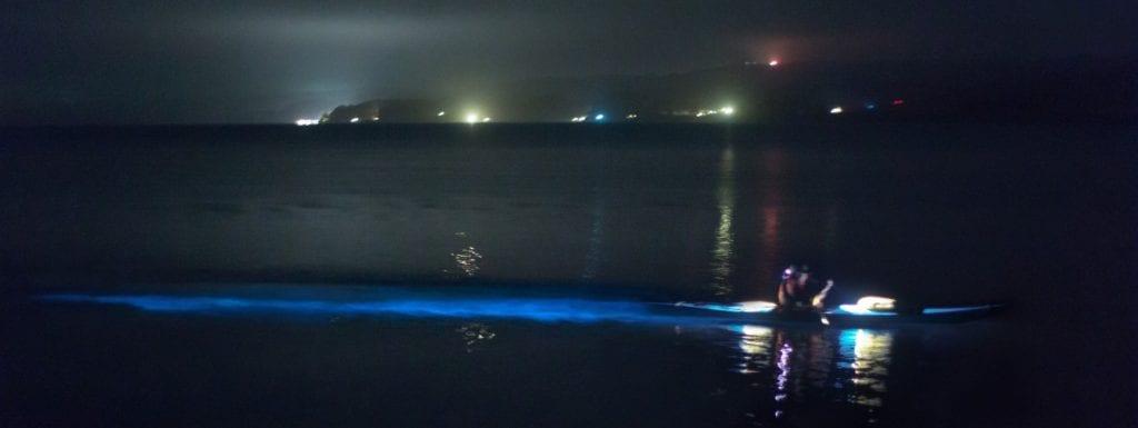 Bioluminescence Kayaking Tour at night on Tomales Bay State Park