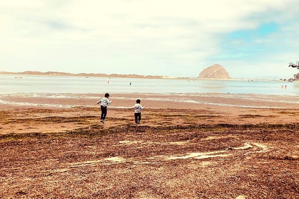 Playing on the muddy beach at Morro Bay State Park. There's so much to do here on a Highway 1 road trip stop, whether you stay for an hour or a full day.