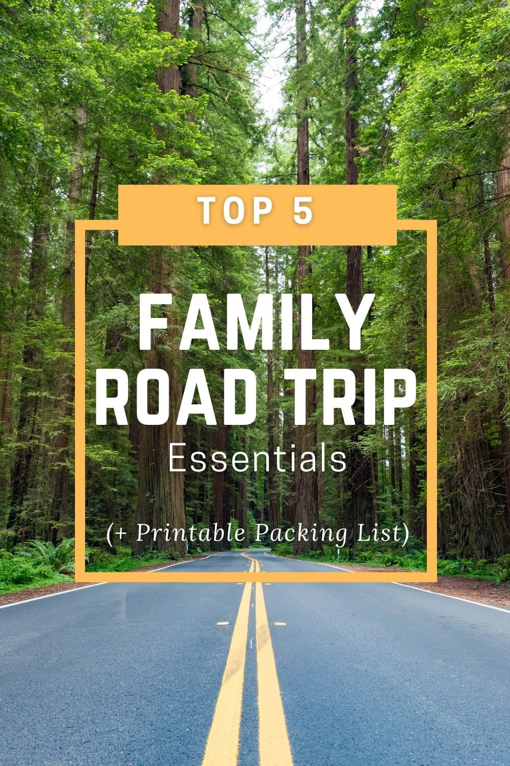 Pinterest Pin for Family Road trip Essentials