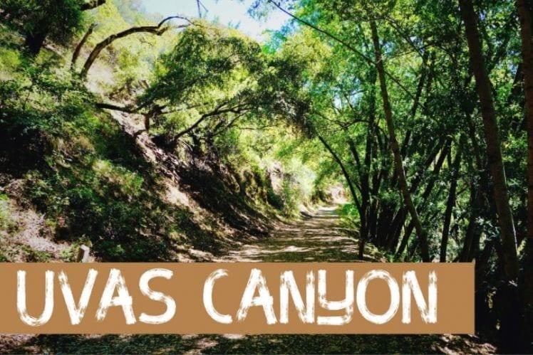 Button to YouTube video of Uvas Canyon