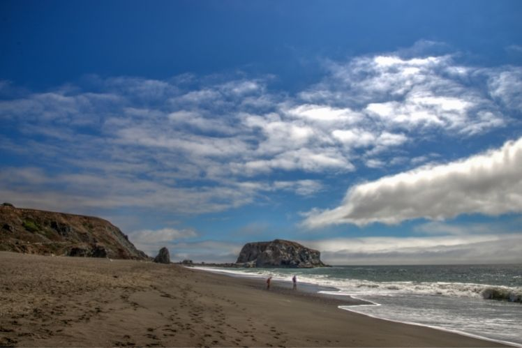 View of Goat Rock Beach looking South