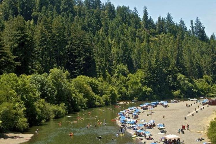 Summer Sunbathers line Johnsons Beach. Hanging out at the beach is a favorite Russian River Family Activity