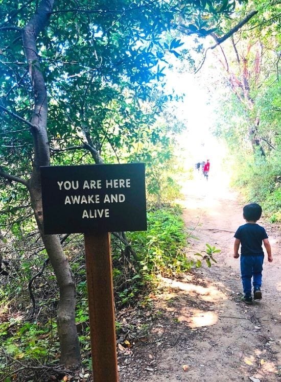 """Bug passes a sign reading """"You are here, Awake and Alive"""" as we finish the hike to lookout point"""