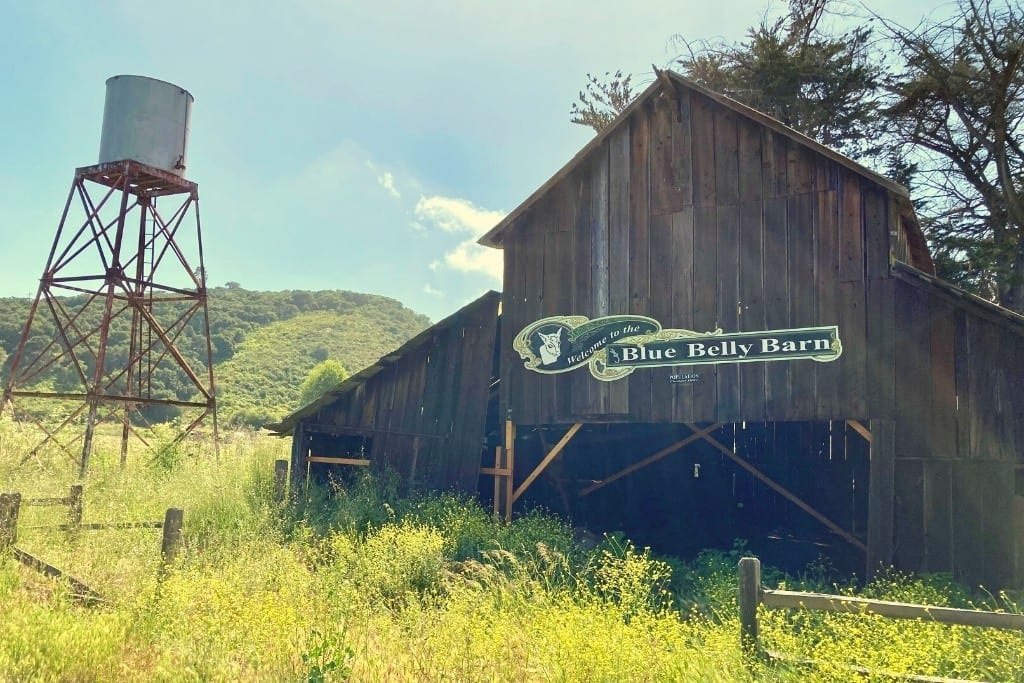 Blue Belly Barn at the Old Edna Townsite