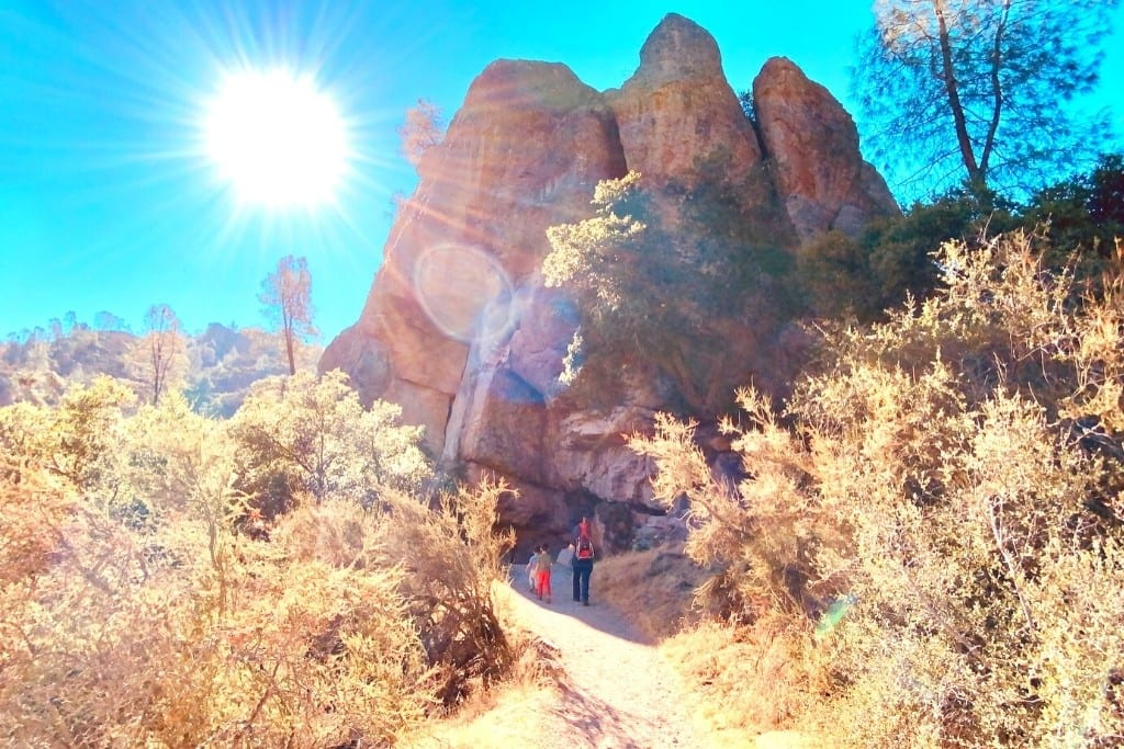 Getting started on the Rim Trail during our Pinnacles National Day Trip.