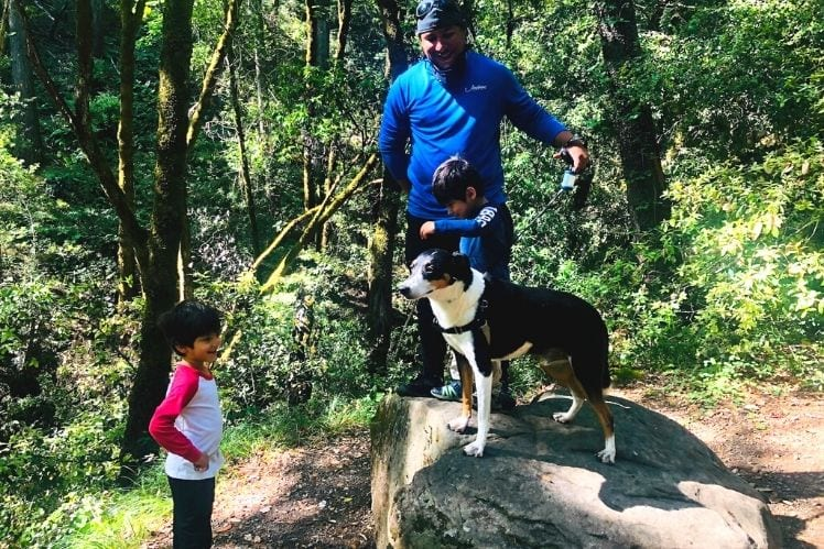 The family pausing on the Resting Rock along the Uvas Canyon Waterfall Loop
