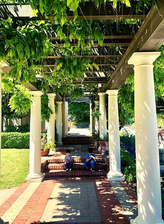 Enjoying the shade under Poet's Walk