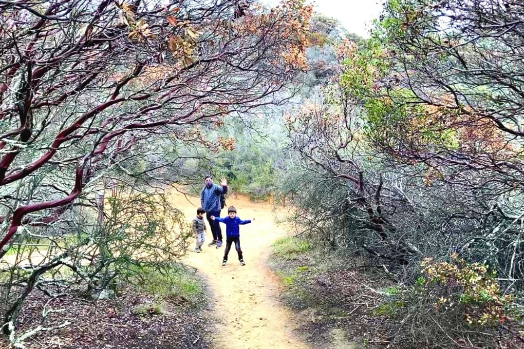 Playing in a Manzanita tree tunnel on the Trail Through Time