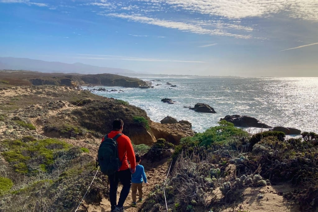 Whether or not you see the famous elephant seals, Año Nuevo is a great Highway 1 road trip stop. These are views of the ocean from the Whitehouse Creek Trail along the bluffs.