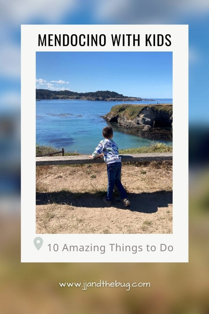 Pin for the Mendocino with Kids Post_JJ looking over the Mendocino Highlands