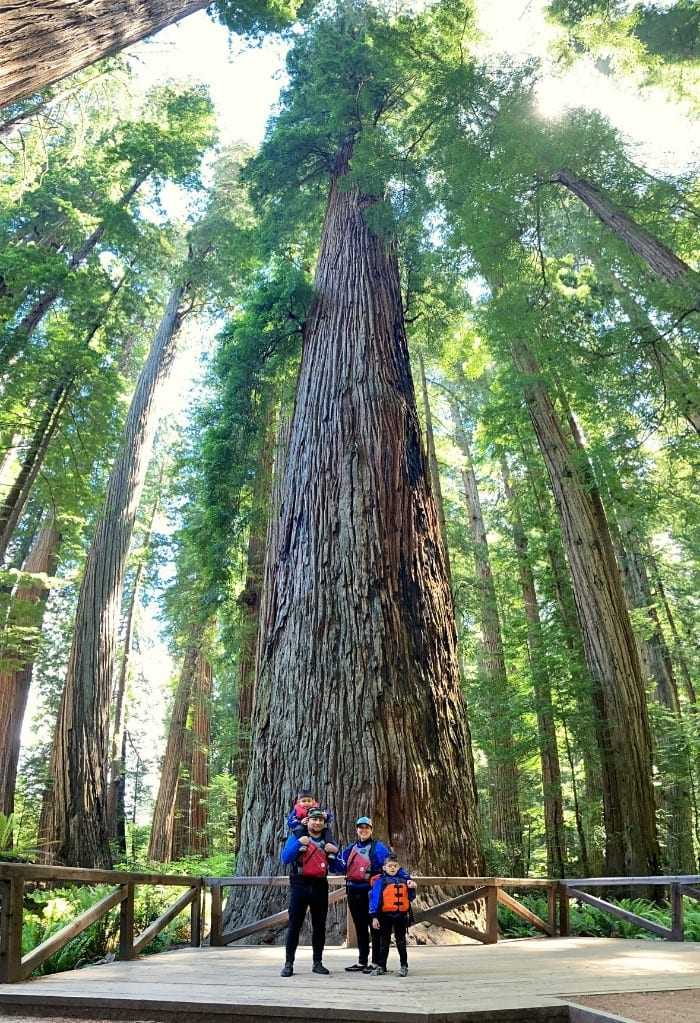 Family Photo in front of the 340 foot tall Stout Tree in Stout Grove