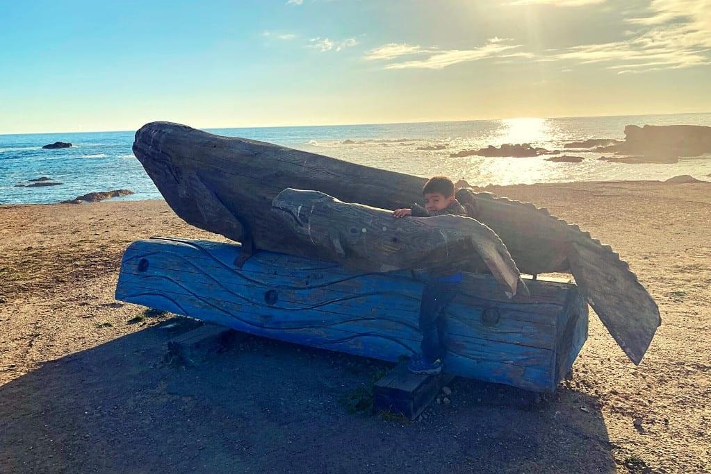 Bug hugging at Whale Sculpture we encountered at Noyo Headlands Coastal Trail