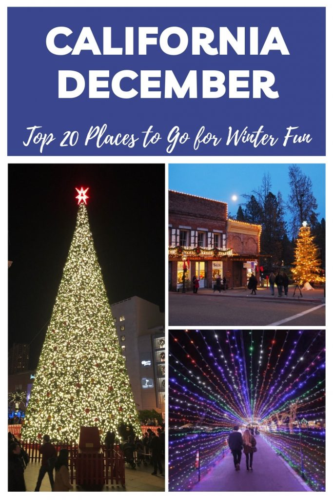 Pinterest Pin for Places to Visit in California in December