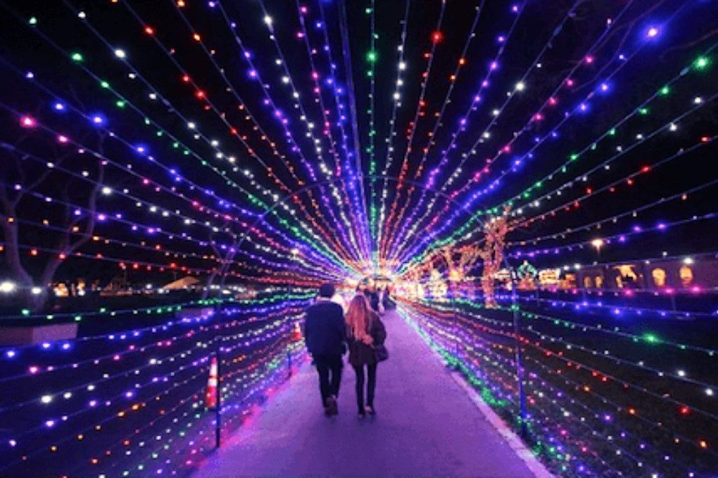 Festival of Lights at WinterFest OC