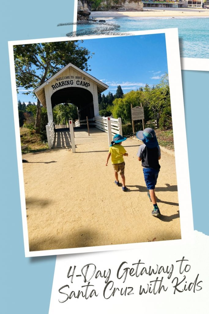Pinterest Graphic for Santa Cruz with Kids