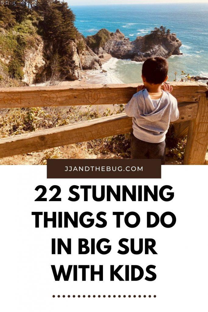 Big Sur Pinterest Pin
