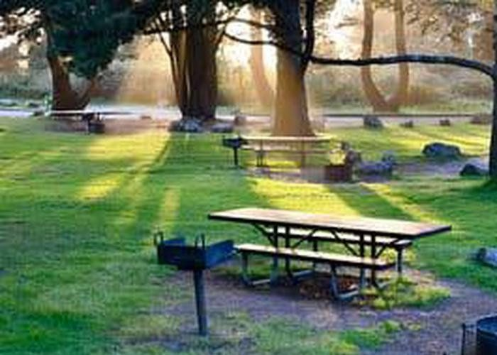 Plaskett Creek Campground